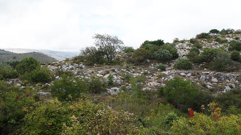 Plateau en haut du baou blanc